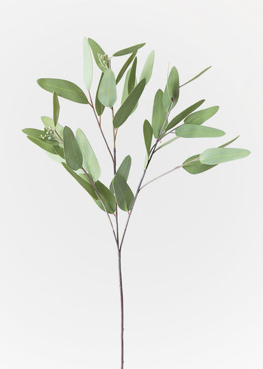 Real Touch Eucalyptus Leaves