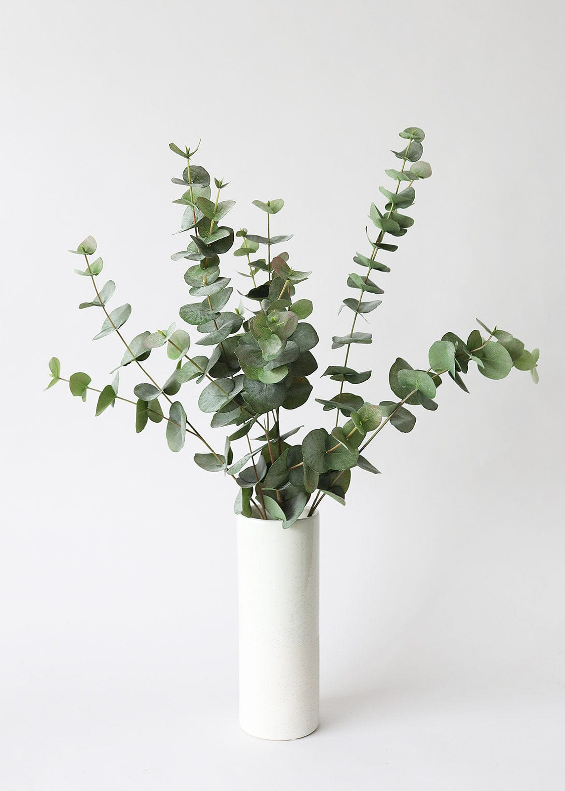 Spiral Eucalyptus Greenery in White Vase