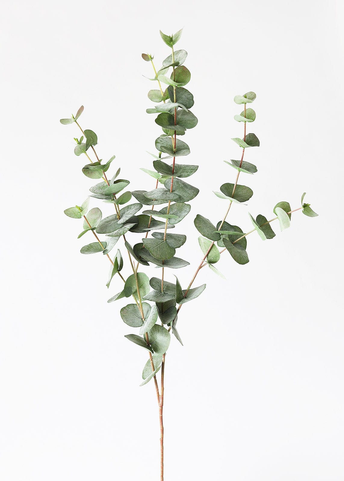 Fake Leaves Spiral Eucalyptus Branch in Gray Green