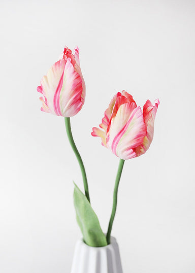 Pink Cream Faux Parrot Tulips