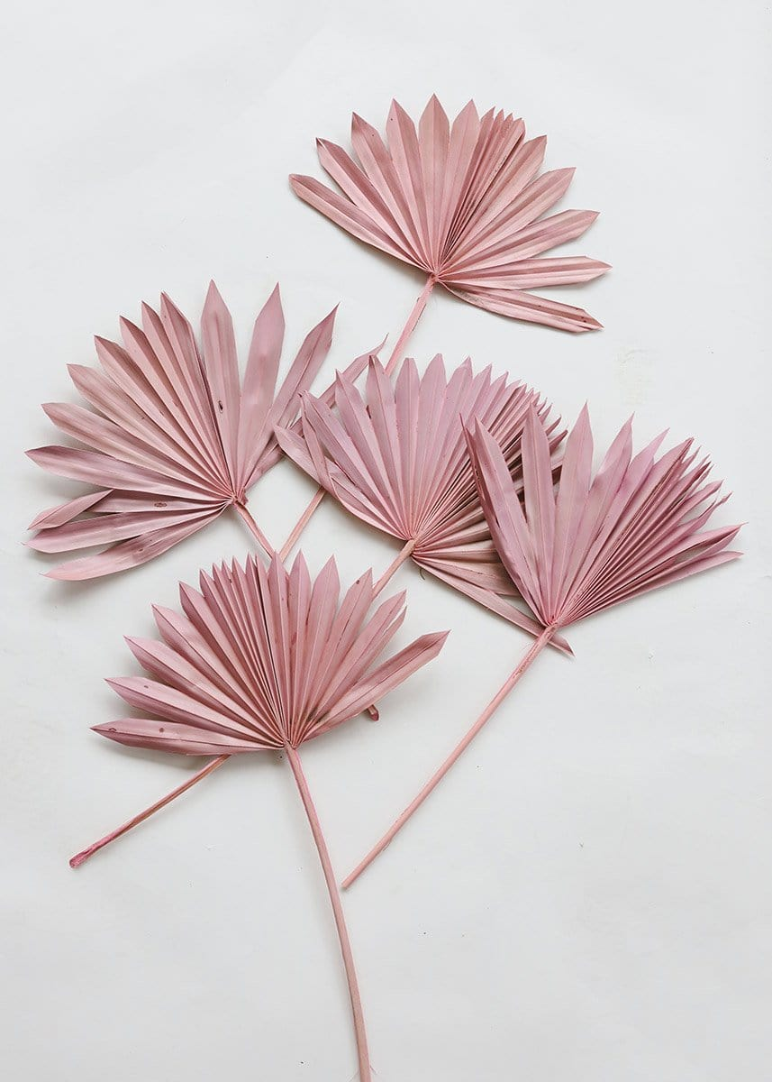 Sun Palms in Light Pink