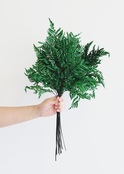Preserved Greenery Leather Fern Wedding Greenery