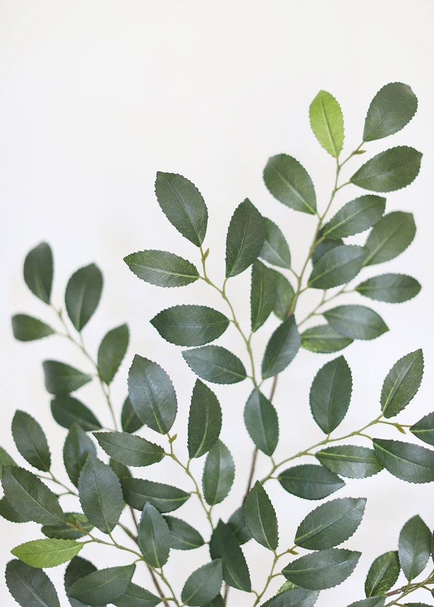 Artificial Leaves Ruscus