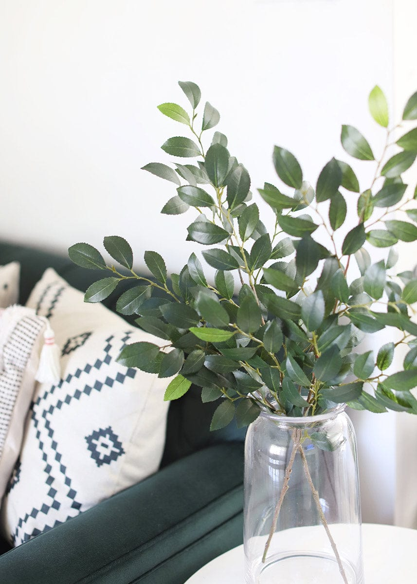 Home Styling with Ruscus Leaves