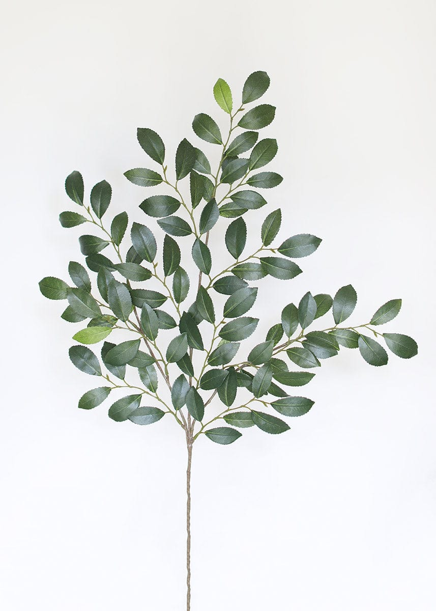 Artificial Italian Ruscus Leaves