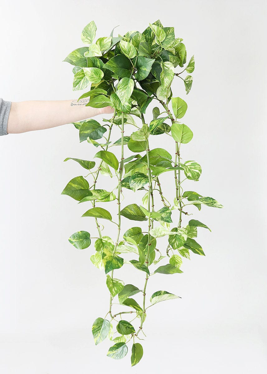 Real Touch Hanging Variegated Pothos Plant