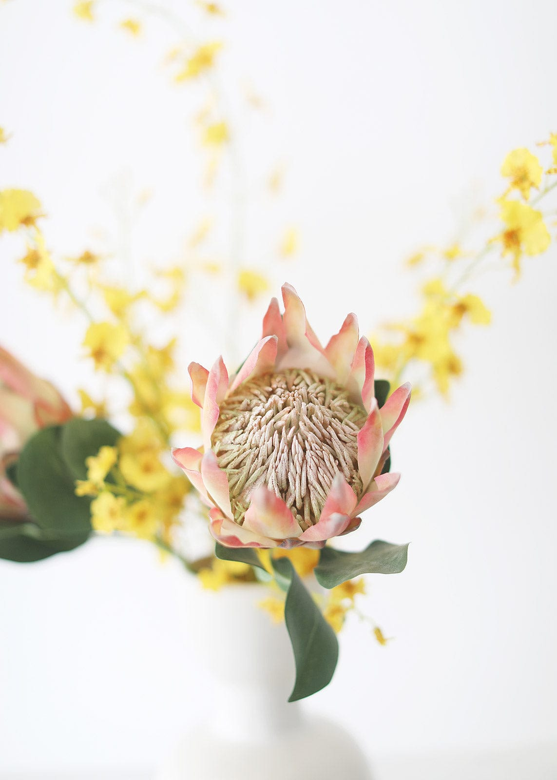 King Protea in Peach Orange with Dancing Orchids