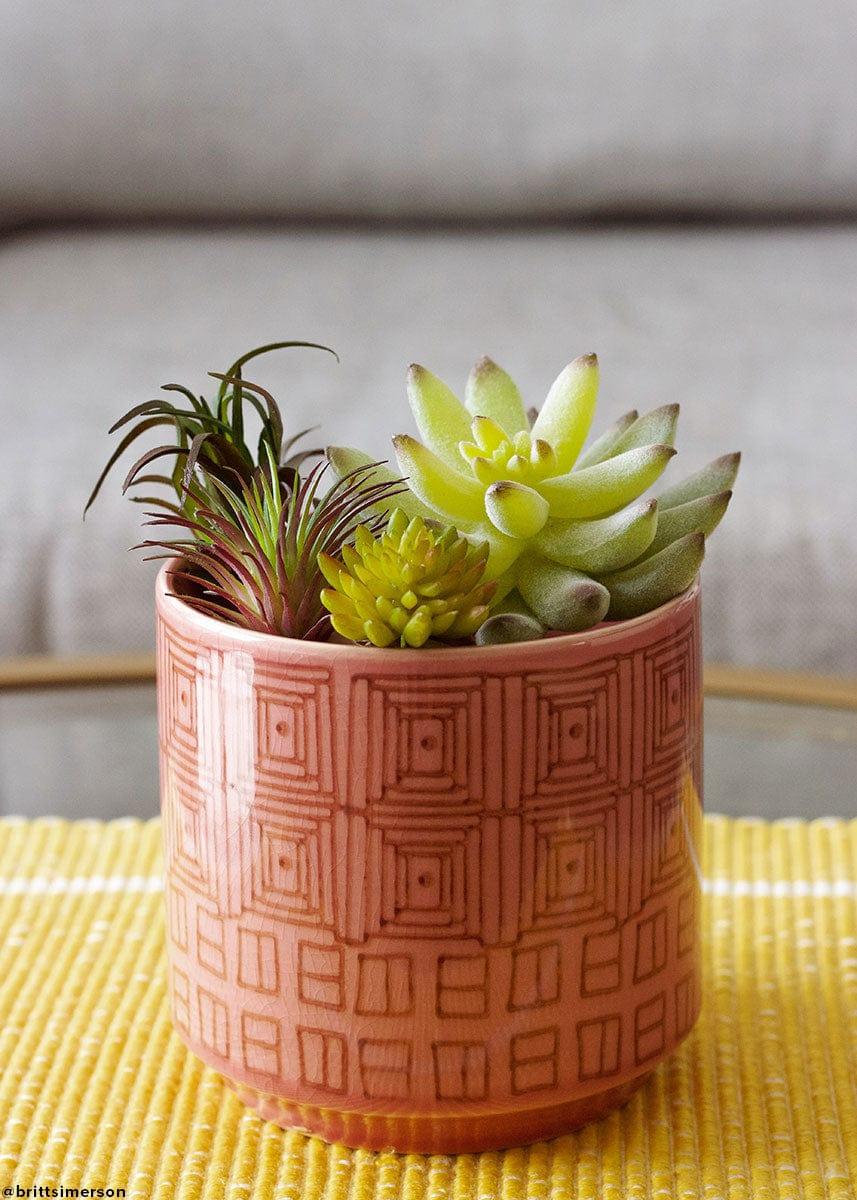 Artificial Agave Cactus Succulents in Pink Flower Pot