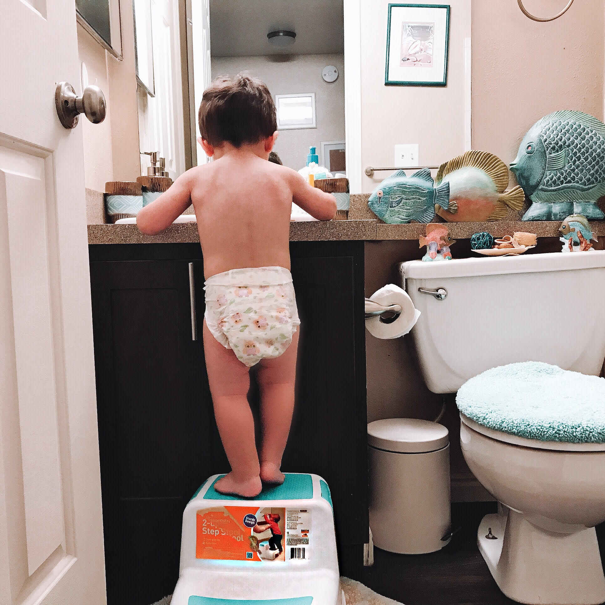 potty training a baby