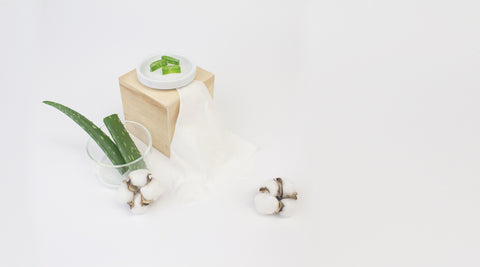 Aloe Vera and Cotton Buds on White Surface