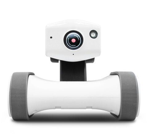 Home Robotic - Riley Home Robot
