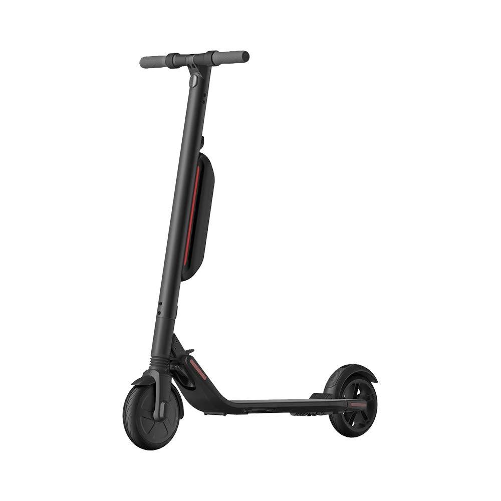 Segway Ninebot ES4 KickScooter with 2nd Battery