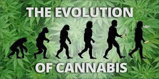 Generation Differences of Smoking Cannabis - The Oozelife Blog - Ooze Evolution of Weed Marijuana Cannabis Mary Jane