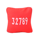32789 Square Pillow