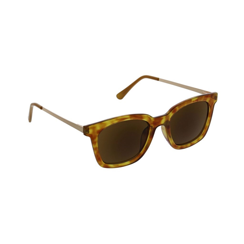 Tortoise Endless Summer Bifocal Readers