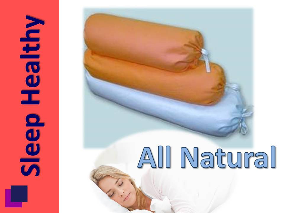 Bio Bolster With Case - Small