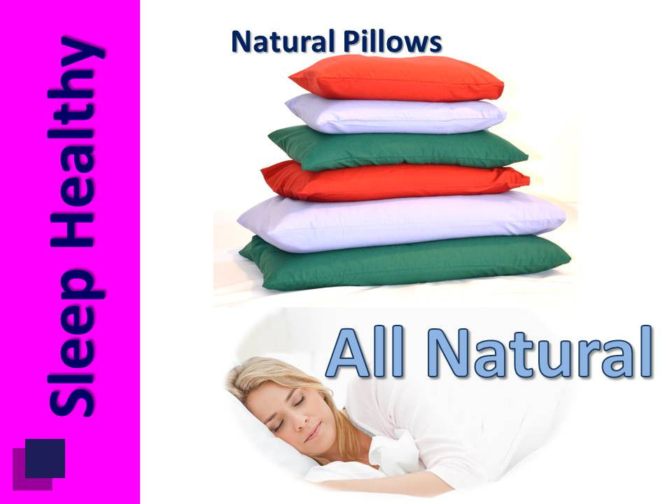 Bio Pillow - Medium