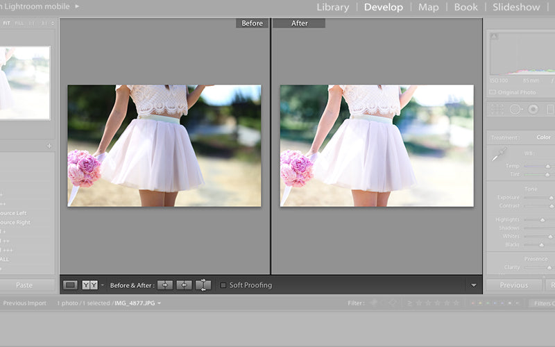 essential lightroom tools