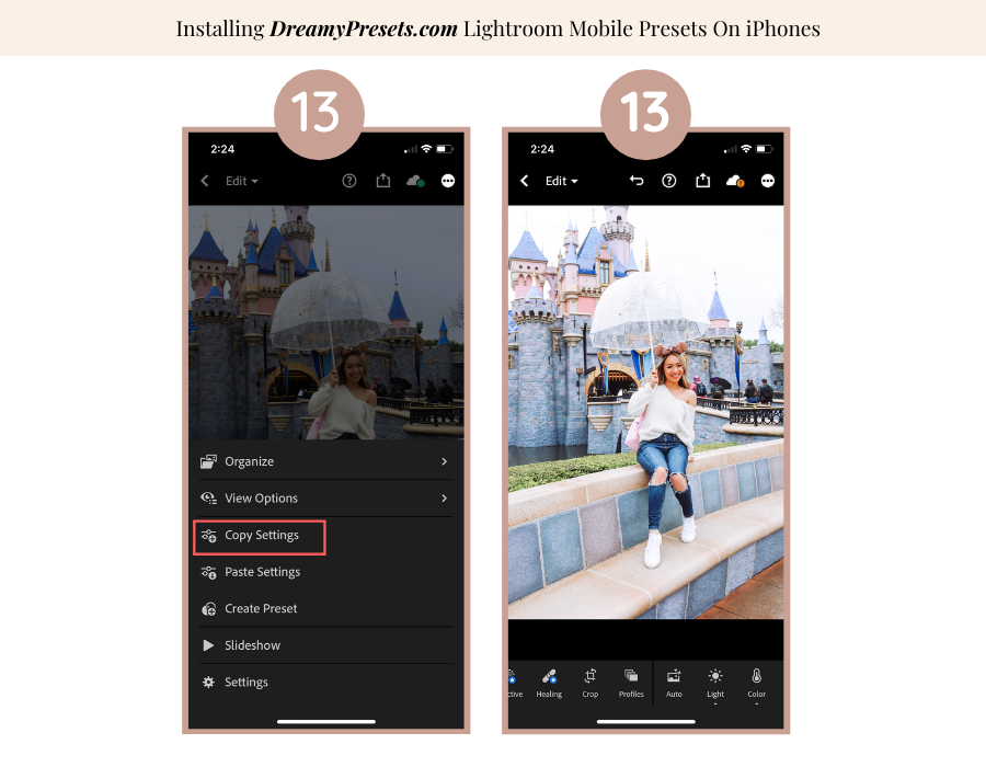 download lightroom presets to iphones