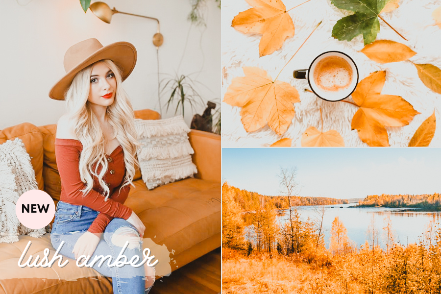 fall lightroom preset - amber