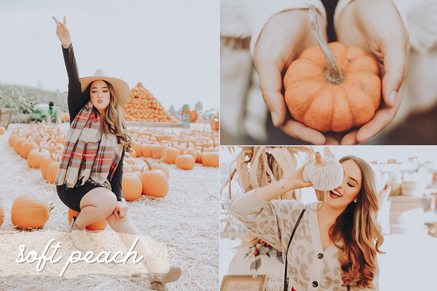 fall lightroom preset - soft peach