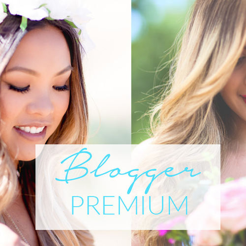 blogger lightroom preset collections
