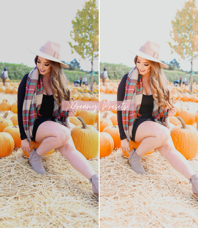 fall lightroom mobile preset