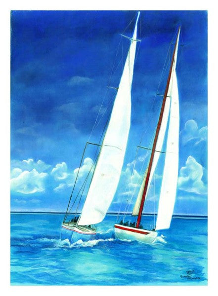 12 Metre Authentic Painting - Large C