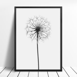 Feather & Dandelion Wall Art Canvas - Nice & Cool