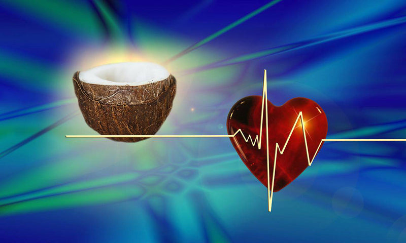 Study Shows Coconut Oil GOOD for Heart Health