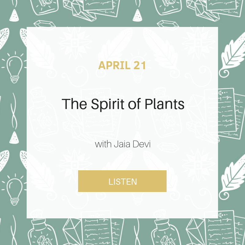 Sunday School: The Spirit of Plants
