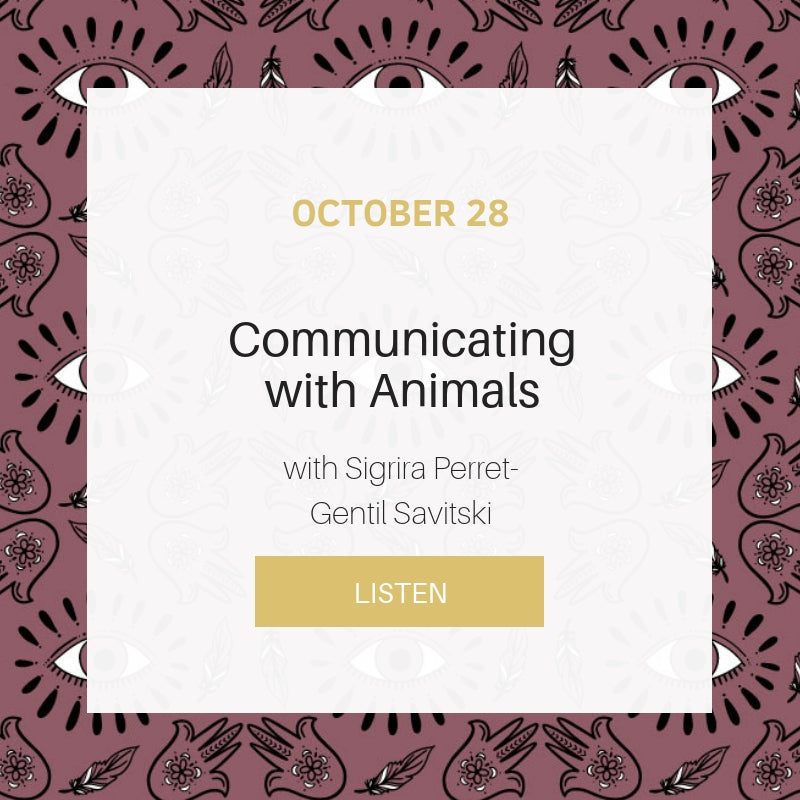 Sunday School: Communications with Animals with Sigrira Perret-Gentil Savitski