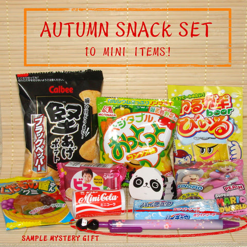 Japanese Dagashi Candy Set & Mystery Gift (Autumn 2017)