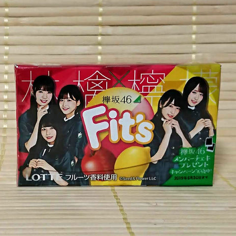 Fit's Chewing Gum - Apple Lemon Mix