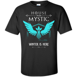 House Of Mystic