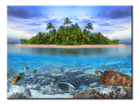 """Sea Islands And The Underwater"", 1 Panel Canvas Wall Art In L And XL Sizes"