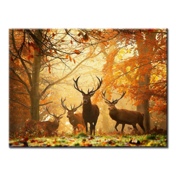 """Deer In Autumn/Fall"", 1(One) Panel Canvas Wall Art/Poster In L And XL Sizes"