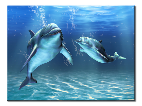 """Two Dolphins"", 1 Panel Canvas Wall Art In L And XL Sizes"