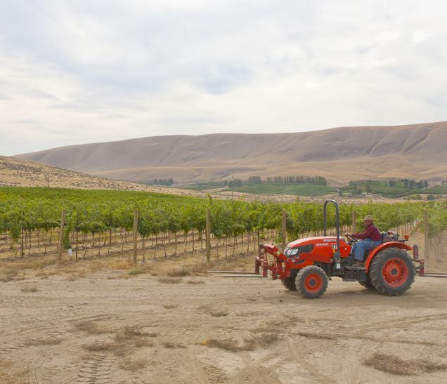 Tractor at Vineyard