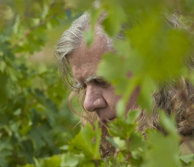 Chris Upchurch in the vines