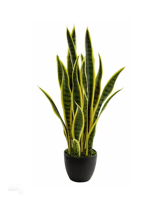 Potted Faux Sansevieria Succulent Snake Plant in Pot 65cm