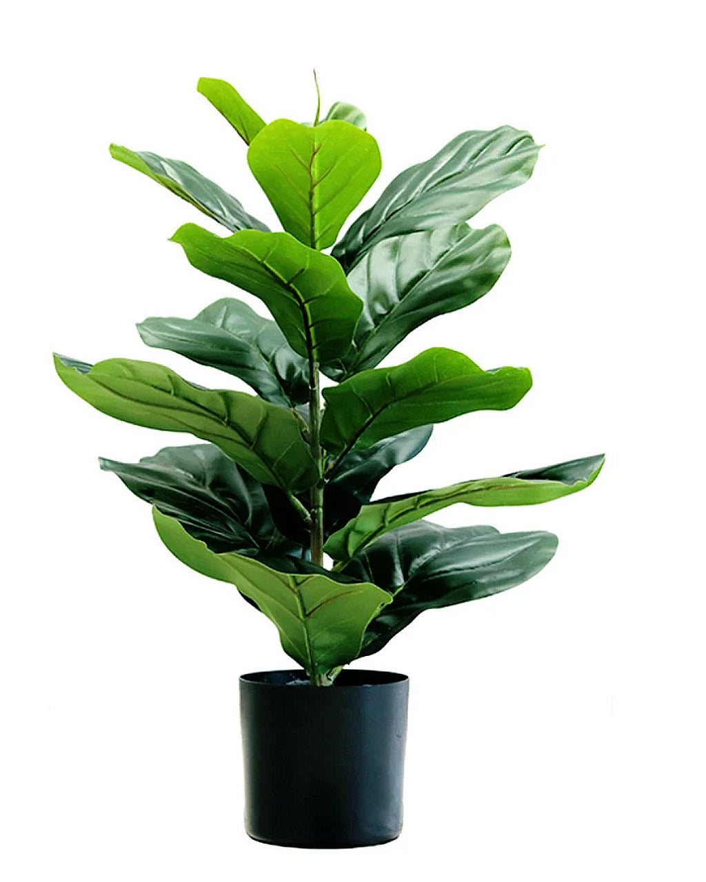 Potted Faux Silk Fiddle Leaf Fig Tree Plant 80Cm