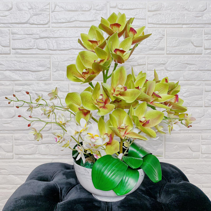 Green Orchids in Marble Bowl
