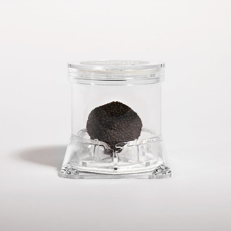 Fresh Black Winter Truffles - Price per lb