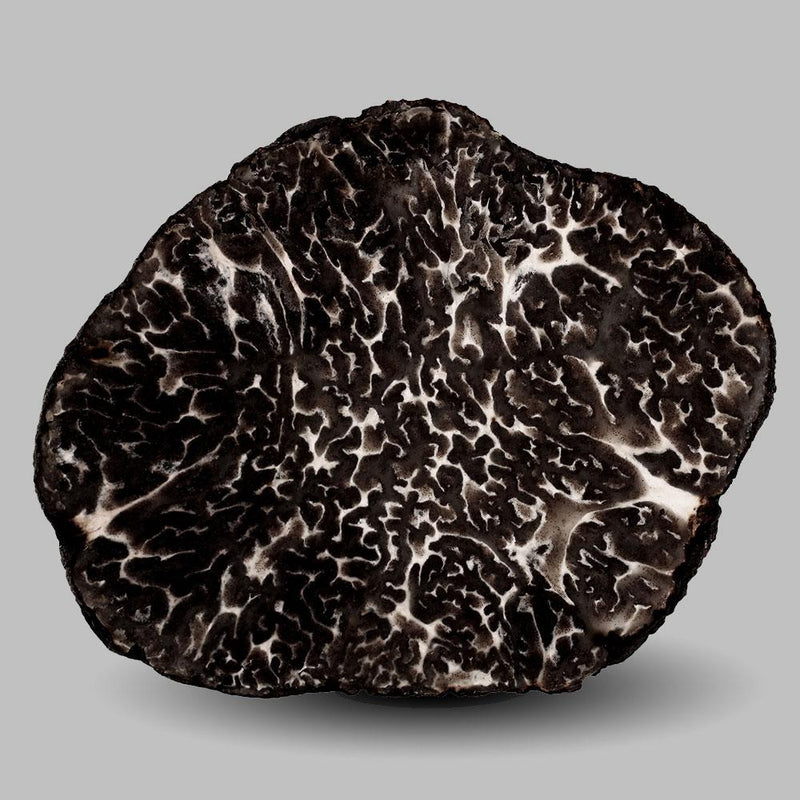 Fresh Black Winter Truffle - 2 oz