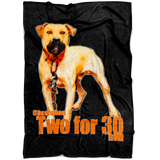 Two for 30 Blanket