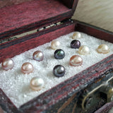 20 Freshwater Oysters with Pearls - The Indulge Store