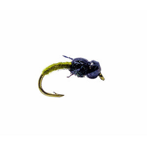 Category 3 Cheeky Fella - Black Tungsten Bead Nymph - olive