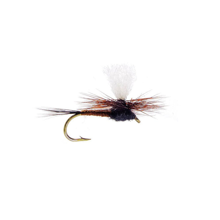 Category 3 Tricky Situation - Dry Fly