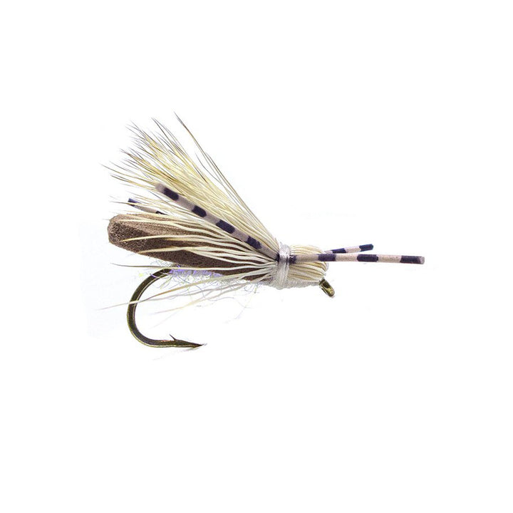 Category 3 Moondance - Dry Fly